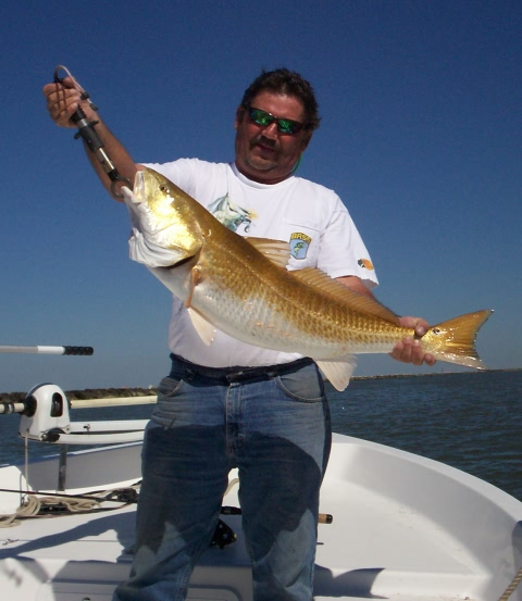 Bull Redfish on Guided Fishing Trip